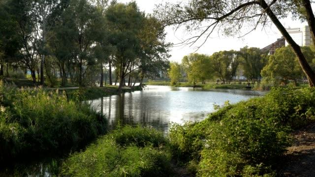 Schöne-Aussicht-auf-den-Fluss-Stadtpromenade-und-grünen-Bäumen-bei-Sonnenuntergang-