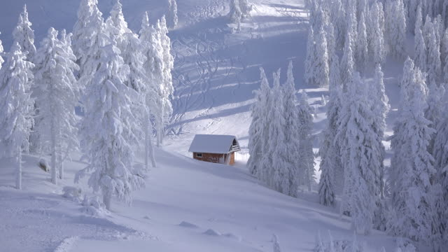 Splendid-winter-landscape-of-mountains-and-fir-trees-covered-with-snow-isolated-little-wooden-cottage-skiers-on-slope-timelapse-of-lights-and-shadows