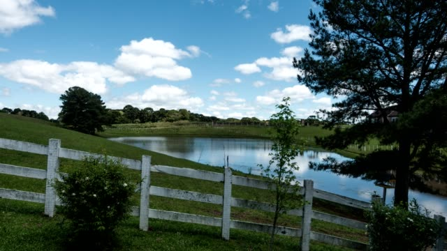 Backyard-with-pond-and-tree-in-clear-sky-sunny-day-timelapse