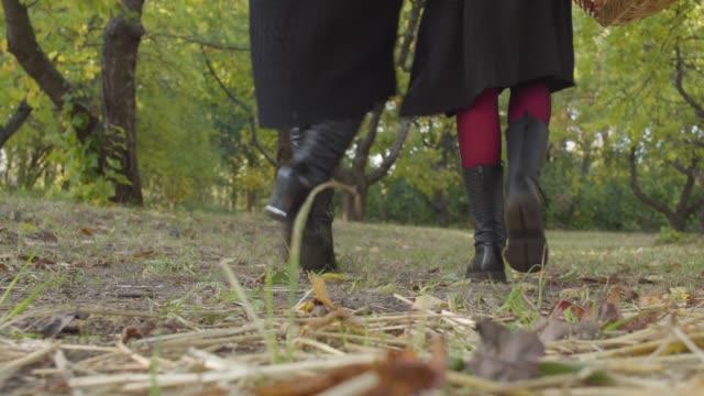 Zwei-Frauen-laufen-im-Herbstwald-weg-