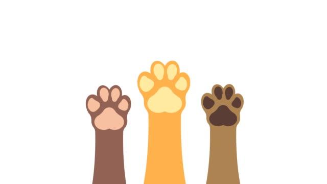 Paws-up-pets-animation-with-optional-luma-matte-Alpha-Luma-Matte-included-4k-video