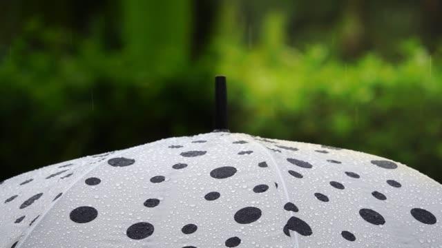 Paraguas-de-lunares-en-la-lluvia-el-concepto-de-gestión-del-riesgo-