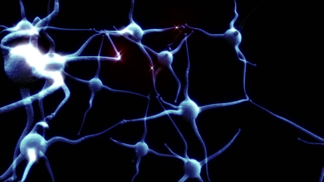 Blue-Neuron-synapse-network-with-red-electric-impulse-activity-able-to-loop