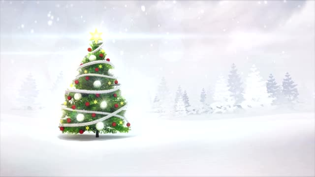 Christmas-tree-in-winter-nature-scenery-revelation-footage