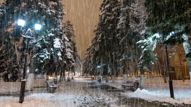 night-winter-Park-with-rain