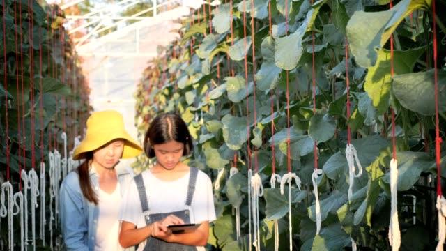 Mujer-asiática-agricultora-y-niña-que-utiliza-tableta-digital-para-monitorear-la-producción-de-melón