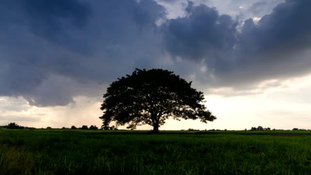 Intensa-tormenta-giratoria-de-supercell