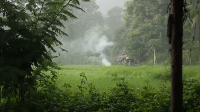 handheld-footage-of-a-small-campfire-extinguished-by-a-tropical-rain-storm-in-Northern-Thailand-Mae-Hong-Son-during-rainy-season