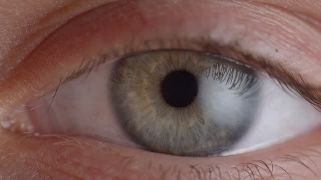 Sesión-de-primer-plano-de-ojos-verdes-parpadeando-y-encogiendo-la-pupila-