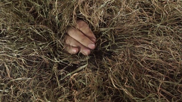 Menschliche-Hand-kommt-aus-Boden-