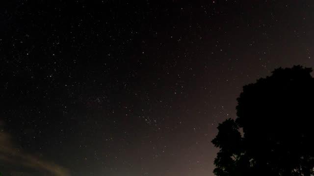 Tiempo-lapso-estrella-y-árbol-frente-de-niebla-y-Rocío