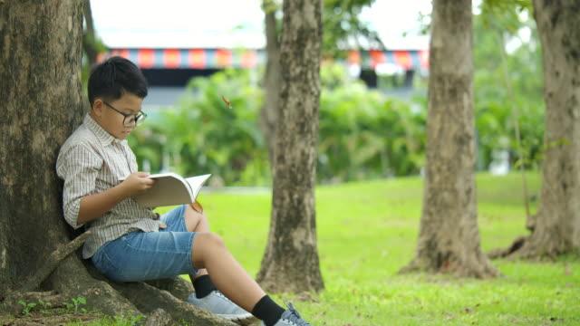Kleiner-Junge-in-an-einem-sonnigen-Tag-unter-dem-Baum-sitzt-und-liest-ein-Buch-mit-Blätter-fallen-die-Bäume-in-Zeitlupe-