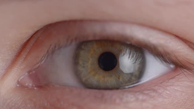 El-primer-plano-del-ojo-verdoso-encogía-rápidamente-la-pupila-en-estado-de-miedo-o-ansiedad-