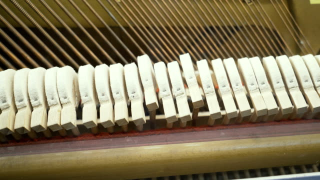 Principles-of-the-work-of-musical-instruments-
