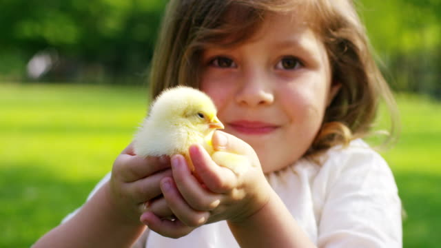 Little-Girl-Playing-with-Chick
