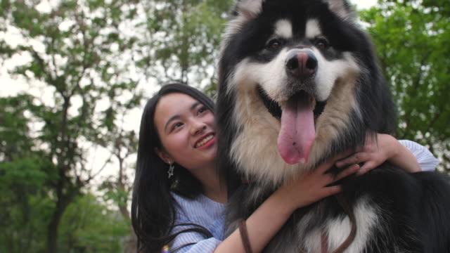 Glückliche-junge-asiatische-Frau-hält-ihren-Hund-Alaskan-Malamute-im-Freien-4k