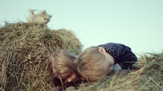 Kinder-spielen-mit-einem-Welpen-in-der-Krippe-im-Feld-