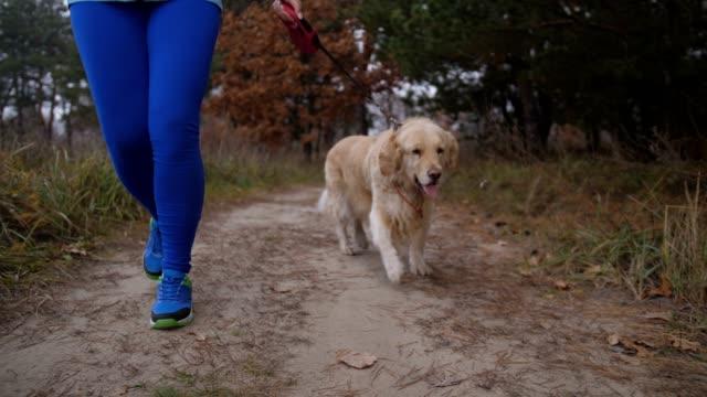 Läufer-Frau-mit-Hund-am-Morgen-joggen-in-der-Natur