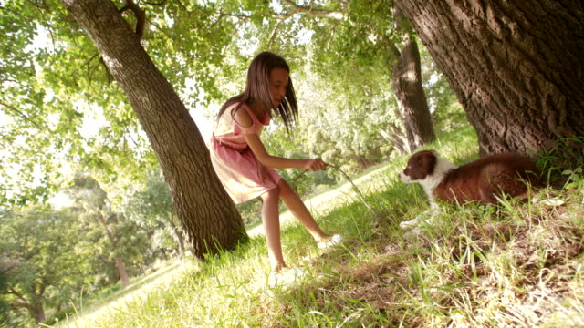 Cute-Multi-ethnic-girl-playing-sticks-with-her-puppy-in-a-park