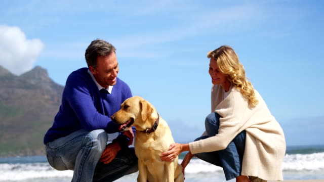 Happy-mature-couple-petting-their-dog-on-the-beach