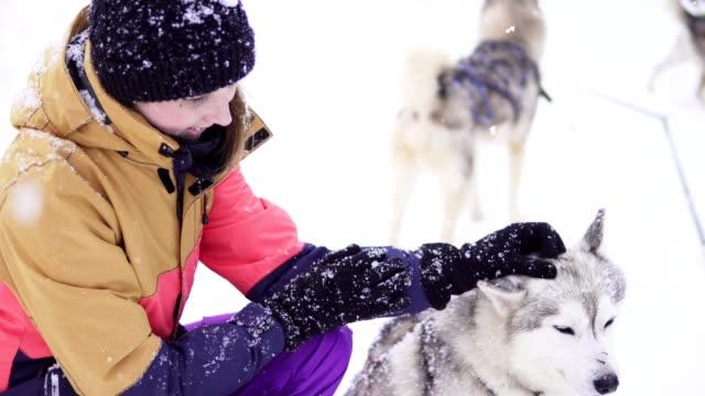Schöne-Mädchen-umarmt-den-Hund-Das-Mädchen-mit-der-Siberian-husky