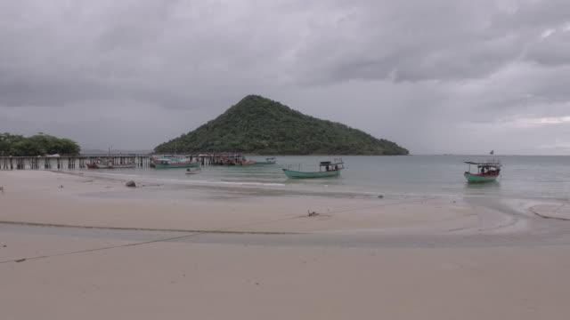 Stray-dogs-walking-on-sand-beach-under-dark-clouds-sky