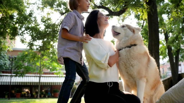 hound-licks-face-woman-in-slow-motion-mom-with-son-and-husky-resting-in-park