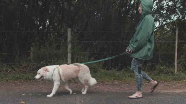 Woman-walking-her-cute-dog-in-the-rain