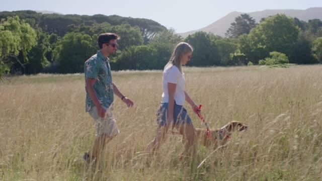 Slow-Motion-Paare-die-ihren-Hund-im-Feld-lange-Gras