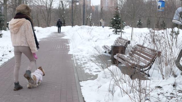 Caminar-con-un-perro-Chica-es-caminar-con-el-perro-Shih-Tzu-por-el-parque-de-invierno-