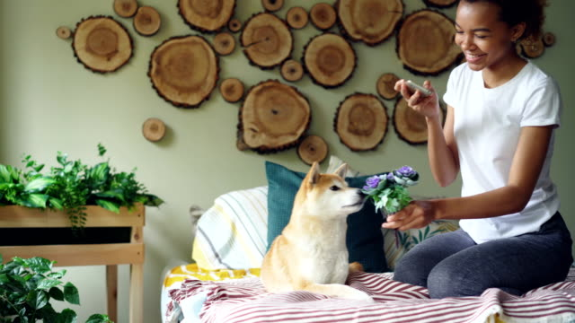 Happy-dog-owner-attractive-woman-is-shooting-her-dog-with-flowers-on-bed-taking-funny-pictures-of-pet-smelling-and-biting-flowers-girl-is-having-fun-