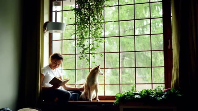 Attractive-African-American-girl-student-is-reading-book-and-stroking-her-purebred-dog-sitting-on-window-ledge-in-modern-apartment-Hobby-animals-and-interior-concept-