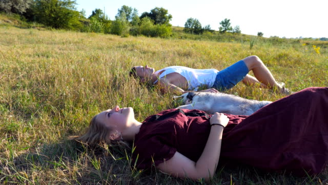 Dolly-shot-of-young-couple-in-love-lying-on-green-grass-at-field-and-stroking-their-siberian-husky-dog-at-sunny-day-Happy-pair-relaxing-and-enjoying-summer-vacation-at-sunset-Low-angle-view-Close-up