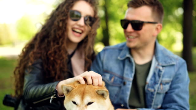 Young-people-pretty-girl-and-her-boyfriend-are-patting-beautiful-dog-laughing-and-talking-resting-in-the-park-sitting-on-grass-Focus-shifts-from-people-to-animal-