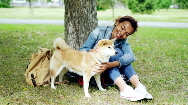 Pretty-mixed-race-woman-is-fussing-her-pet-dog-resting-on-the-grass-in-the-park-on-warm-summer-day-Beautiful-green-lawn-old-trees-and-backpack-are-visible-