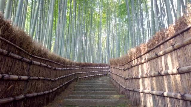 walkway-bamboo-tunnel-named-Arashiyama-bamboo-forest-in-Kyoto-Tourist-landmark-of-Japan
