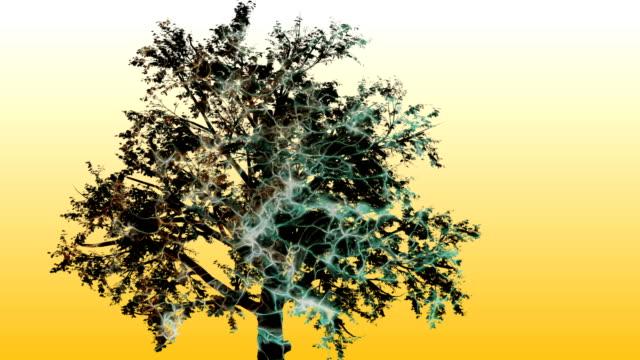 Mixta-de-dos-de-animación-en-3d-del-árbol-y-tecnología-interfaz-ordenador-pantalla-Digital-de-datos