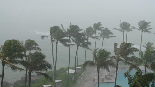 Hurricane-Wind-and-Rain-on-Island-Resort