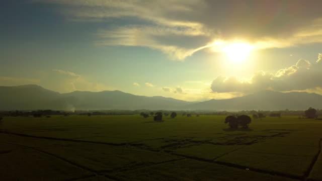 Vista-aérea-volando-sobre-el-campo-de-arroz-con-la-puesta-del-sol-hermosa-