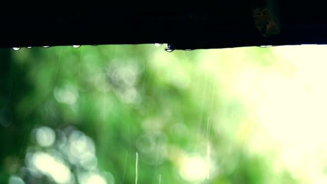 Regen-und-Wasser-vom-Dach-fallen-