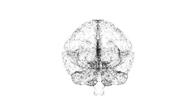 Inteligencia-artificial-digital-del-cerebro-de-polígonos-sobre-fondo-blanco