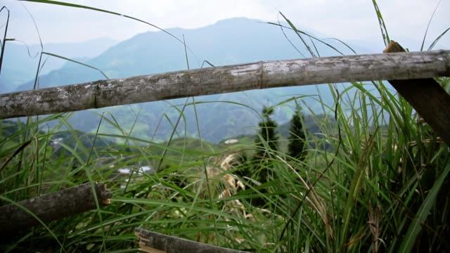 The-Longji-Rice-Terraces