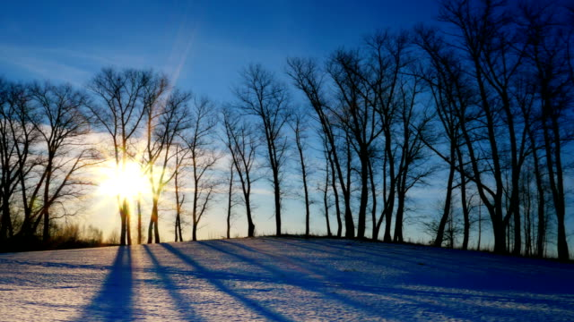Sunset-in-the-winter-forest