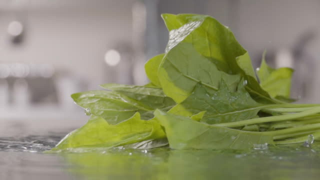 Falling-of-spinach-into-the-water-Slow-motion-240-fps