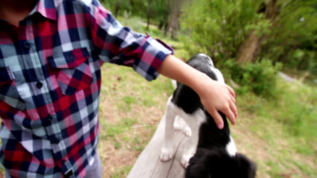 Male-Child-stroking-his-pet-friend-a-crossbreed-puppy-dog