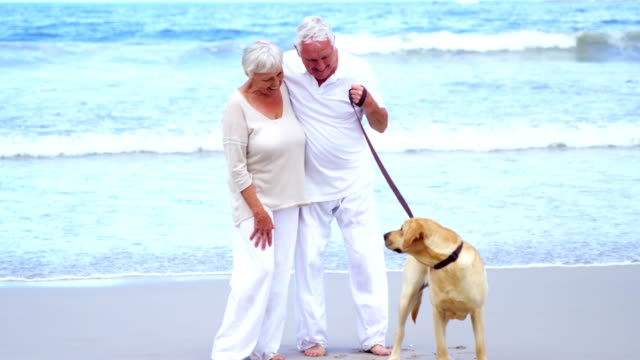 Happy-senior-couple-playing-with-dog-on-the-beach
