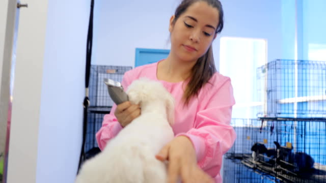 Happy-Woman-Working-In-Pet-Store-And-Playing-With-Dog