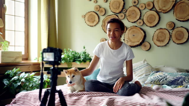 Cheerful-African-American-woman-popular-blogger-recording-video-for-her-online-blog-about-shiba-inu-dogs-using-camera-on-tripod-Girl-is-sitting-on-bed-with-her-pet-