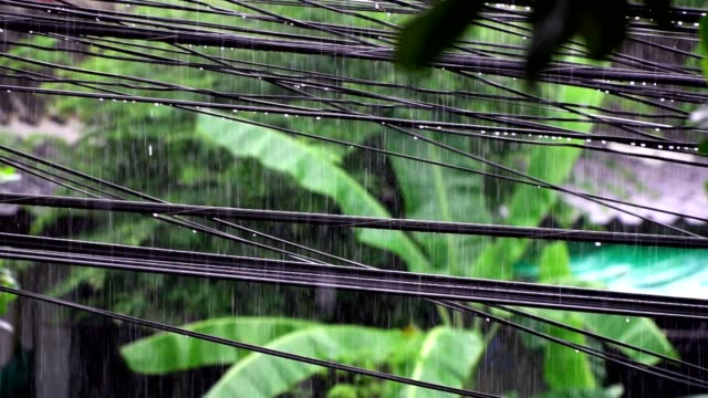 Tormenta-hace-lluvia-en-temporada-de-lluvias