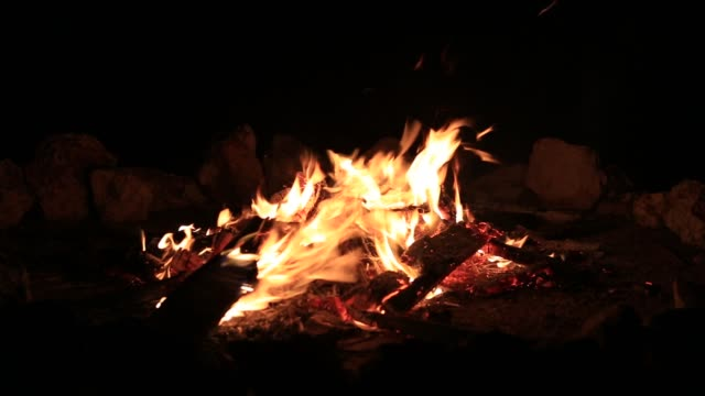 Bonfire-burning-trees-at-night-Bonfire-burning-brightly-heat-light-camping